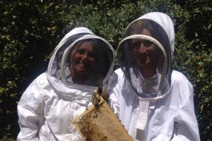 bee suits